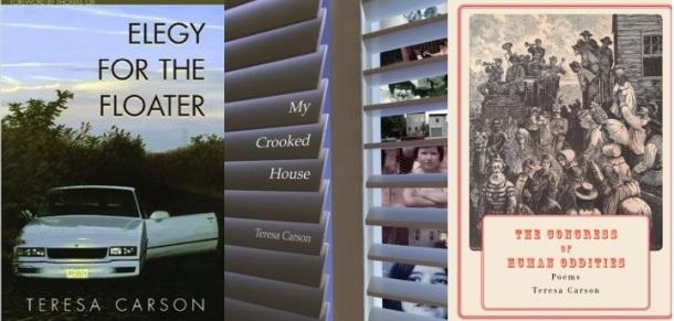 Teresa Carson Book Covers.jpg
