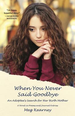 when_you_never_said_goodbye